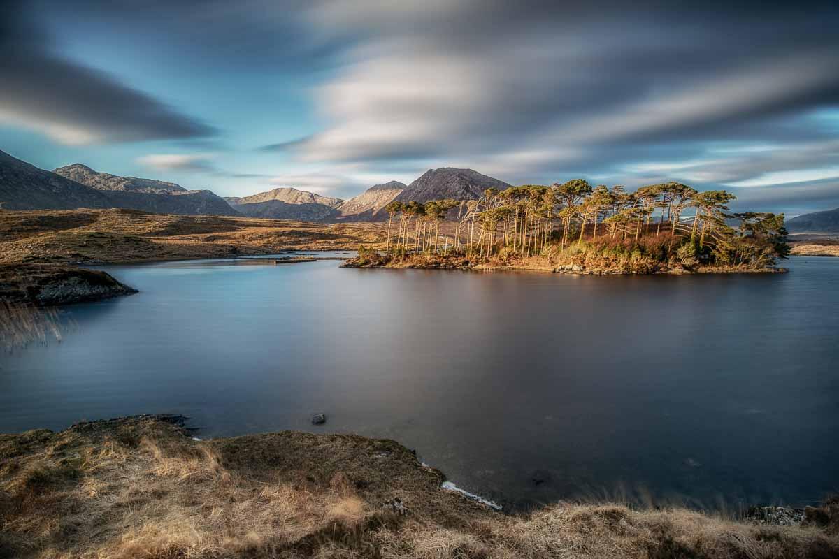 Pine island, Derryclare